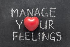 Διαχειριστείτε την καρδιά συναισθημάτων σας στοκ εικόνες
