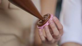 Διαδικασία το ρόδινο macaron creama απόθεμα βίντεο