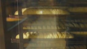 Διαδικασία το φρέσκο ψωμί στο εργοστάσιο αρτοποιείων απόθεμα βίντεο
