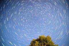 Διαδρομές αστεριών επάνω από το δάσος στη Ρωσία Στοκ Εικόνα
