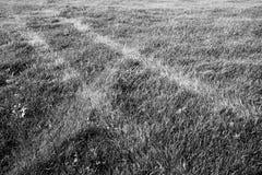 Διαδρομές ροδών σε έναν τομέα της χλόης: η εικόνα είναι σε γραπτό Στοκ Φωτογραφίες