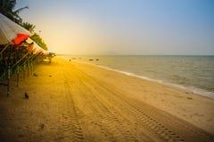Διαδρομές ροδών στην αμμώδη παραλία το πρωί στην παραλία Bangsaen Στοκ φωτογραφίες με δικαίωμα ελεύθερης χρήσης