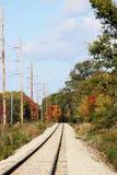Διαδρομές σιδηροδρόμου και δέντρα πτώσης Στοκ εικόνες με δικαίωμα ελεύθερης χρήσης