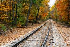 Διαδρομές σιδηροδρόμου φθινοπώρου στοκ εικόνα με δικαίωμα ελεύθερης χρήσης