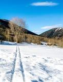 Διαδρομές σκι που οδηγούν μακριά μια όμορφη χειμερινή ημέρα Στοκ εικόνες με δικαίωμα ελεύθερης χρήσης