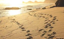 Διαδρομές στην παραλία Στοκ φωτογραφία με δικαίωμα ελεύθερης χρήσης