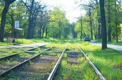 Διαδρομές τραμ Blured στο πράσινο πυκνό δάσος Στοκ Εικόνες