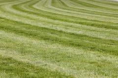 Διαδρομή αγώνων αλόγων με τη γραμμή καμπυλών στοκ φωτογραφία με δικαίωμα ελεύθερης χρήσης