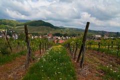Διαδρομή κρασιού ταξιδιού στη Γαλλία Λα route des vins Στοκ φωτογραφία με δικαίωμα ελεύθερης χρήσης