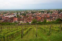 Διαδρομή κρασιού ταξιδιού στη Γαλλία Στοκ Φωτογραφίες
