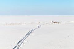Διαδρομή μπλε ουρανού, χιονιού και σκι στην παγωμένη θάλασσα Στοκ Εικόνες
