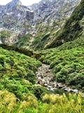 Διαδρομή Νέα Ζηλανδία Milford στοκ εικόνα