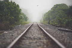 Διαδρομή σιδηροδρόμων στην ομίχλη πρωινού Στοκ Εικόνες