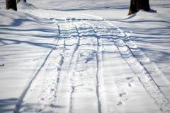 Δρόμος στο χειμερινό δάσος Στοκ εικόνες με δικαίωμα ελεύθερης χρήσης