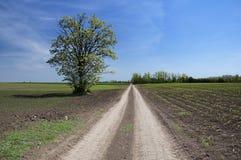 Διαδρομή στην επαρχία Στοκ εικόνες με δικαίωμα ελεύθερης χρήσης