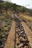 Διαδρομή στο αφρικανικό πάρκο σαφάρι στοκ εικόνες