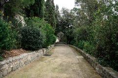 Διαδρομή στο πάρκο που περιβάλλεται από τα δέντρα στοκ εικόνα
