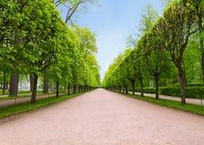 Διαδρομή στο πάρκο Στοκ Εικόνες