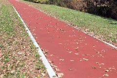 Διαδρομή Jogging στο πάρκο Έκδοση φθινοπώρου Στοκ φωτογραφία με δικαίωμα ελεύθερης χρήσης