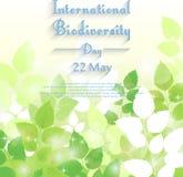 Διεθνές υπόβαθρο ημέρας βιοποικιλότητας με τα φρέσκα πράσινα φύλλα απεικόνιση αποθεμάτων