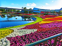 Διεθνές φεστιβάλ λουλουδιών & κήπων Epcot Στοκ Φωτογραφίες