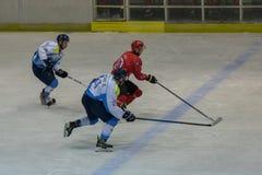 Διεθνής αντιστοιχία πρωταθλήματος χόκεϊ IHL μεταξύ HC Vojvoidna Νόβι Σαντ και HC Triglav Kranj Στοκ εικόνες με δικαίωμα ελεύθερης χρήσης