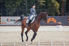 Διεθνής εκπαίδευση αλόγου σε περιστροφές Στοκ εικόνες με δικαίωμα ελεύθερης χρήσης