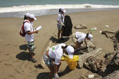 Διεθνής παράκτια δραστηριότητα ημέρας καθαρισμού στην παραλία Λα Guaira, κράτος Βενεζουέλα Vargas στοκ εικόνα με δικαίωμα ελεύθερης χρήσης