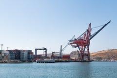 Διεθνείς τελικοί γερανοί Ensenada στοκ εικόνες με δικαίωμα ελεύθερης χρήσης