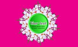 Διευκρινισμένα διανυσματικά floral κυκλικά λουλούδια άνοιξη πλαισίων άσπρα Στοκ φωτογραφίες με δικαίωμα ελεύθερης χρήσης