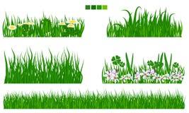 Διευκρινισμένη διανυσματική πράσινη χλόη με το σύνολο λουλουδιών και φύλλων Στοκ Εικόνες