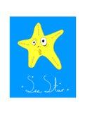 Διευκρινισμένο αστέρι θάλασσας καρτών Στοκ Εικόνες