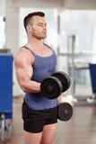 Δικέφαλοι μυ'ες workout στοκ φωτογραφία με δικαίωμα ελεύθερης χρήσης