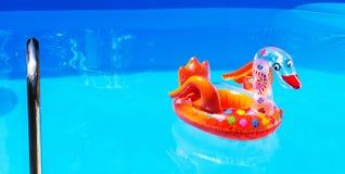 Διογκωμένο κόκκινο μπαλόνι του Κύκνου Στοκ Εικόνα