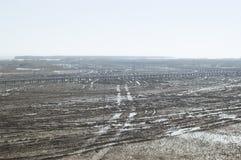 διπαλιρροιακή ζώνη Στοκ φωτογραφία με δικαίωμα ελεύθερης χρήσης