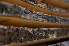 Διπλωμένες ξύλινες καφετιές και γκρίζες σανίδες σε ένα πριονιστήριο Συσσωρευμένοι πίνακες κληθρών ως σύσταση στοκ φωτογραφία