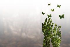 Διπλά αποτελέσματα έκθεσης στο υπόβαθρο φύσης χεριών σκιαγραφιών Στοκ Φωτογραφίες