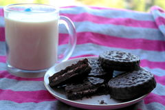 Διπλά μπισκότα τσιπ σοκολάτας με το γάλα μεντών και καρύδων Στοκ εικόνα με δικαίωμα ελεύθερης χρήσης