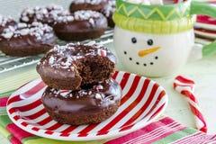 Διπλή σοκολάτα παγωμένο Peppermint Donuts Στοκ Εικόνα