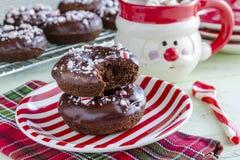 Διπλή σοκολάτα παγωμένο Peppermint Donuts Στοκ εικόνες με δικαίωμα ελεύθερης χρήσης