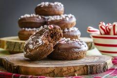 Διπλή σοκολάτα παγωμένο Peppermint Donuts Στοκ Φωτογραφίες