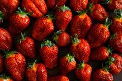 Διπλή φράουλα μούρων Στοκ εικόνα με δικαίωμα ελεύθερης χρήσης