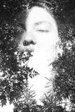 Διπλό πορτρέτο έκθεσης Στοκ φωτογραφία με δικαίωμα ελεύθερης χρήσης