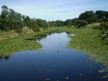 Δισεκατονταετές πάρκο Σίδνεϊ Στοκ φωτογραφίες με δικαίωμα ελεύθερης χρήσης