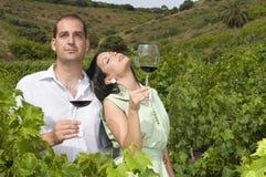 δοκιμάζοντας κρασί αμπε&lam Στοκ Εικόνα