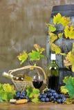 δοκιμάζοντας κρασί δύο Στοκ Φωτογραφία