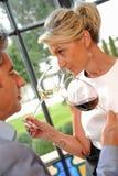 Δοκιμάζοντας κρασί ζεύγους στο Castle Στοκ Φωτογραφίες