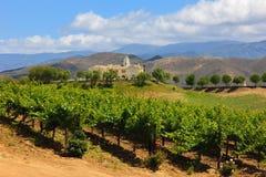 δοκιμάζοντας κρασί Καλιφόρνιας Στοκ Εικόνα