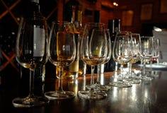 δοκιμάζοντας κρασί της Πορτογαλίας λιμένων Στοκ Εικόνες
