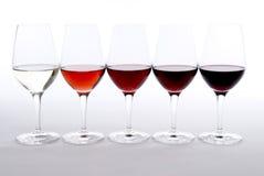 δοκιμάζοντας κρασί Στοκ φωτογραφίες με δικαίωμα ελεύθερης χρήσης
